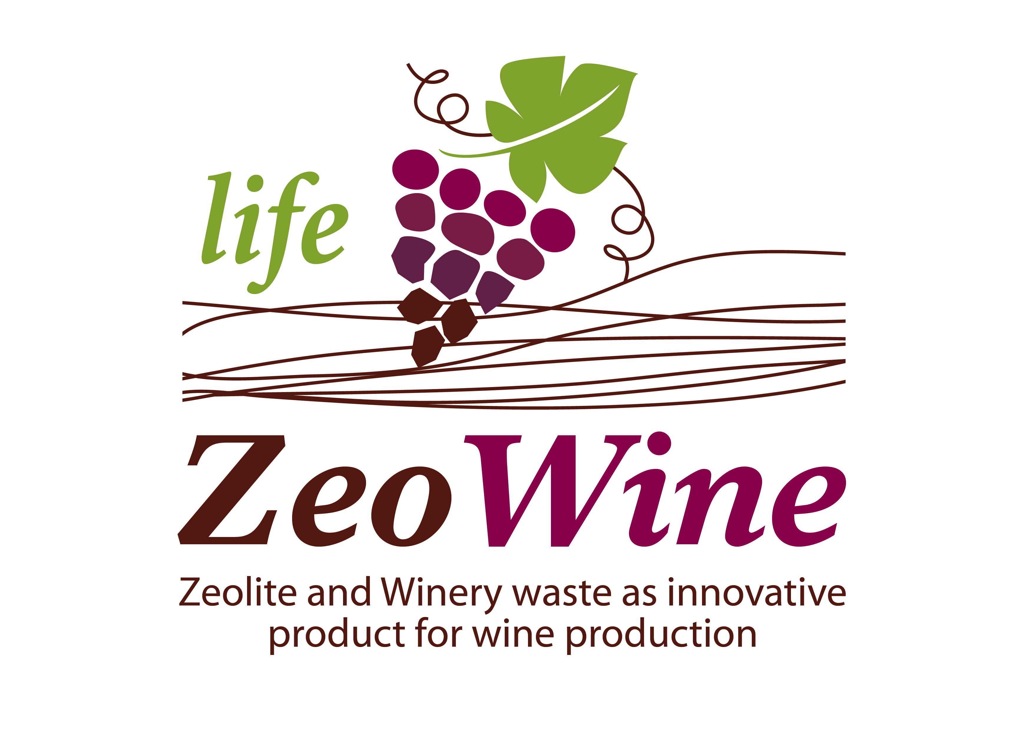 LIFE ZEOWINE – ZEOlite and WINEry waste as innovative