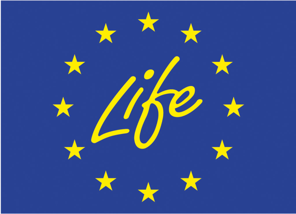 Life Programme Flag